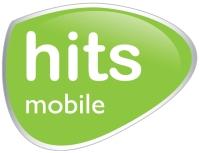 Logo HITS 300